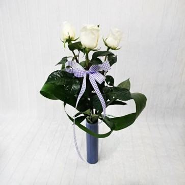 3/5 Rose Bianche con Vaso