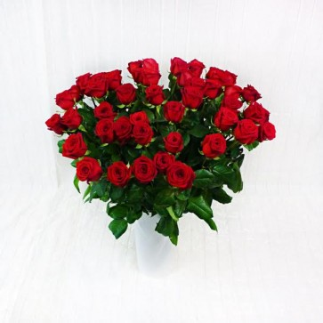 50 Rose Rosse a Gambo Lungo