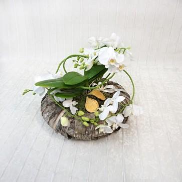 Coroncina Natalizia con Orchidea